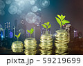 coins and money growing plant for finance and 59219699