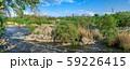 South Bug River near the village of Migiya, 59226415