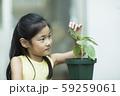 植物を観察する女の子 59259061