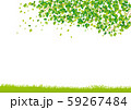 木:木 幹 枝 自然 緑 葉 新緑 新芽 初夏 夏 春 エコ グリーン 59267484