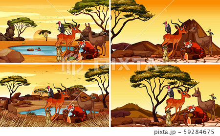 Four scenes with many animals in the field 59284675