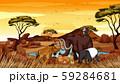 Scene with many animals in savanna 59284681