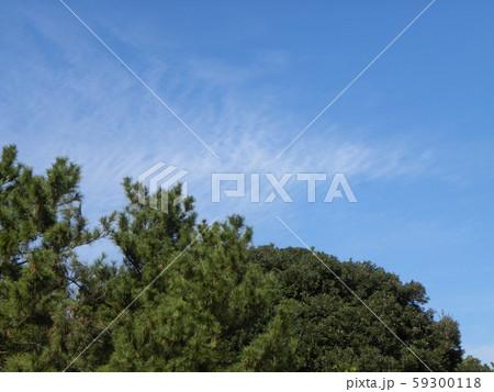秋の青空と白い雲 59300118