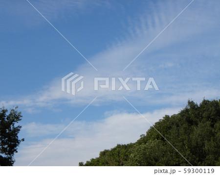 秋の青空と白い雲 59300119
