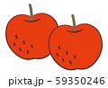 りんご 59350246
