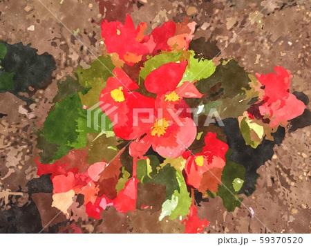 花の水彩イラストシリーズ 59370520