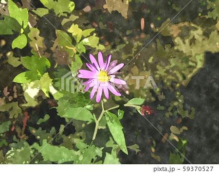 花の水彩イラストシリーズ 59370527