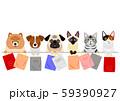 紙袋を持つ犬と猫 一列 59390927