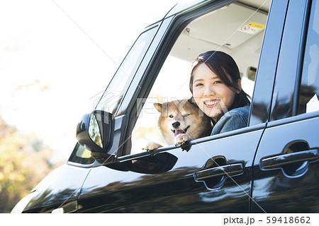 柴犬と女性 ドライブ 59418662