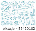 手描き線画 海の生き物 59420182