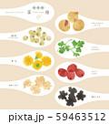 薬膳 / 漢方食材 / ひとさじイラスト-4 59463512