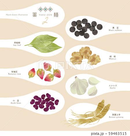 薬膳 / 漢方食材 / ひとさじイラスト-2 59463515