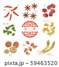 薬膳 / 漢方食材 / ほっこりイラスト-1 59463520