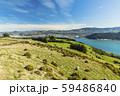 ニュージーランド ダニーデン 展望台からのオタゴ港 59486840
