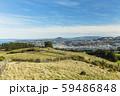 ニュージーランド ダニーデン 展望台からのダニーデンとオタゴ港 59486848
