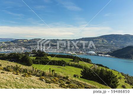 ニュージーランド ダニーデン 展望台からのダニーデンとオタゴ港 59486850
