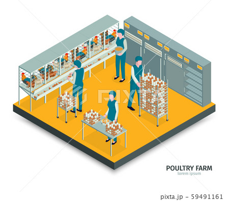 Farm Egg Gathering Composition 59491161