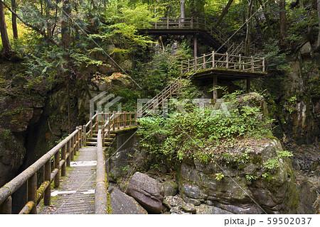 竜神の滝 遊歩道 夕森公園(岐阜県中津川市) 59502037