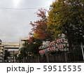 東京下町 酉の市 提灯 紅葉黄葉 59515535
