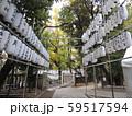 東京下町 酉の市 提灯 大島神社  59517594