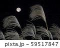 中秋の名月 十五夜 ススキと満月 イメージ素材 59517847