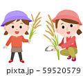 稲刈り体験をする母娘 イラスト 59520579