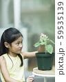 植物を観察する女の子 59535139
