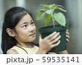 植物を観察する女の子 59535141