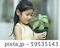 植物を観察する女の子 59535143