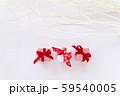 クリスマスギフト 白い枝 イルミネーション 59540005
