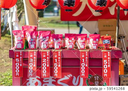 お祭・まつり・屋台・露店・出店・縁日・天津甘栗・あま栗・栗・クリ 59541268
