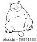 座っている大きな猫 59541363