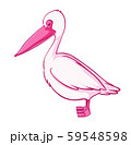 Pink pelican on white background 59548598