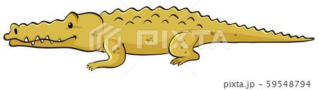 Yellow crocodile on white background 59548794
