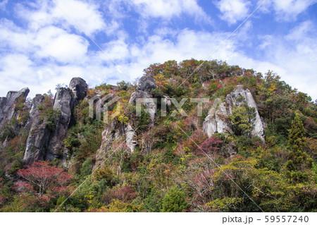 猿の飛岩 59557240