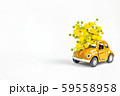 Car toy model delivering bouquet of mimosa flowers 59558958