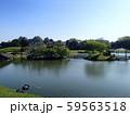 池に架かる橋 59563518