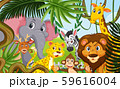 Wild animals in the forest 59616004