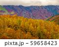 白馬岩岳からの風景【長野県白馬村】 59658423