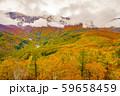 白馬岩岳からの風景【長野県白馬村】 59658459