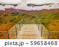 白馬岩岳からの風景【長野県白馬村】 59658468