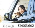 助手席の柴犬と女性 59663602