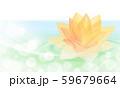 水面に浮かぶ黄色の蓮 59679664