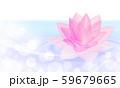 水面に浮かぶピンクの蓮 59679665
