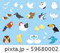 色々な野鳥セット2 59680002