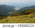 山から見える港湾 59688220