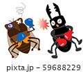 昆虫のボクシング 59688229