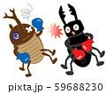 昆虫のボクシング 59688230