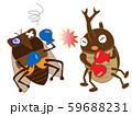 昆虫のボクシング 59688231