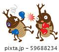昆虫のボクシング 59688234